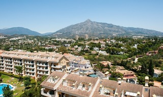 Ter huur: Penthouse Appartement in Nueva Andalucia, Marbella 289